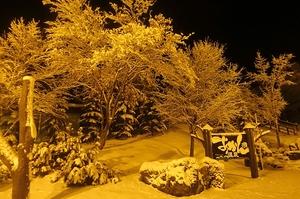小雪?大雪?