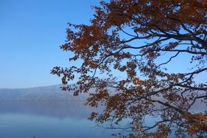 屈斜路湖も見頃です