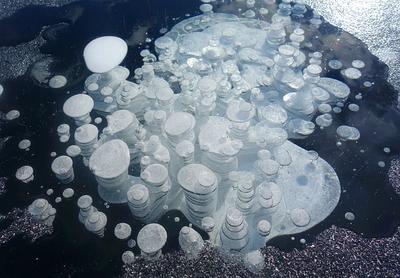 奇跡の氷アート