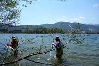 阿寒湖湖岸清掃