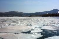 絶景!阿寒湖砕氷帯遊覧船