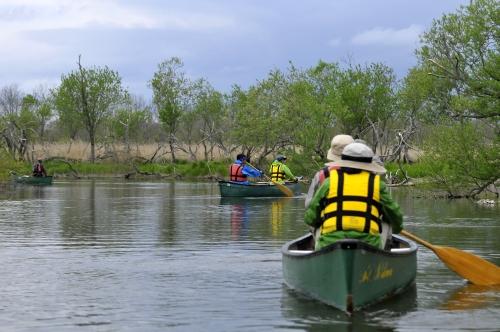 カナディアンカヌーで釧路川を下ろう!