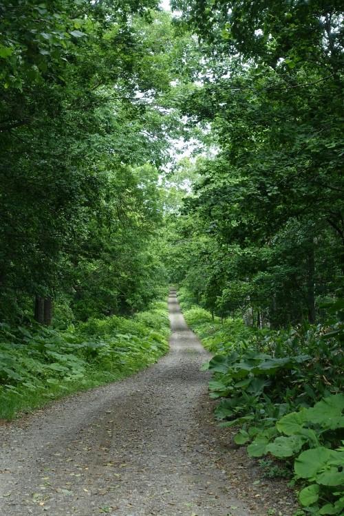 古の道「網走山道」