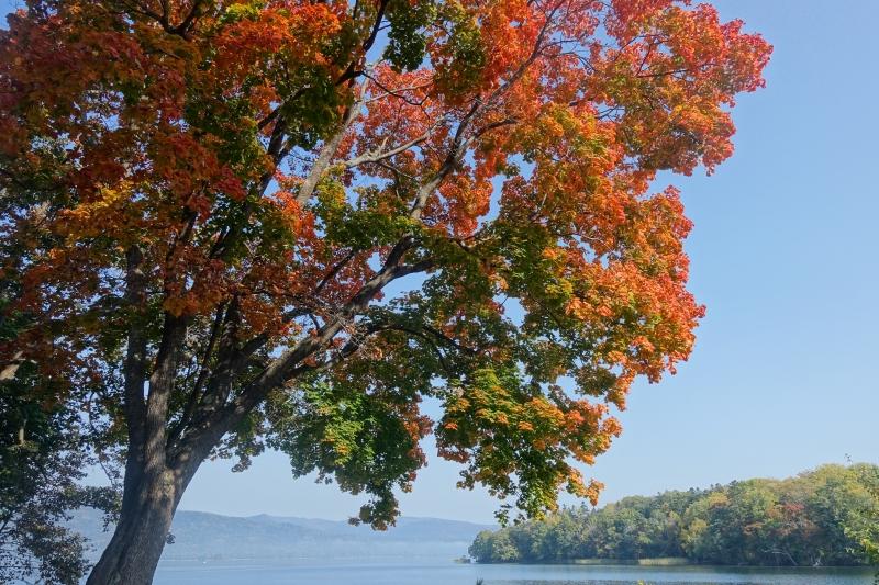 朝靄と紅葉の阿寒湖