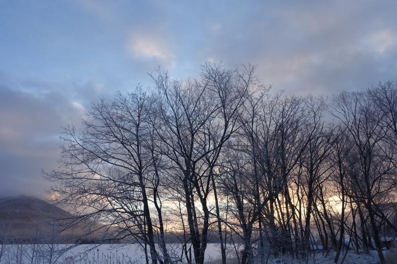 氷点下20℃の朝