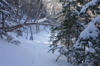 冬のおすすめ白湯山展望台へ