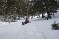レディーと冬山へ